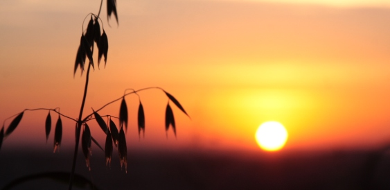 matahari beredar