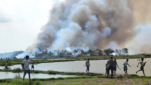 Pemusnahan Etnis Rohingya di Myanmar
